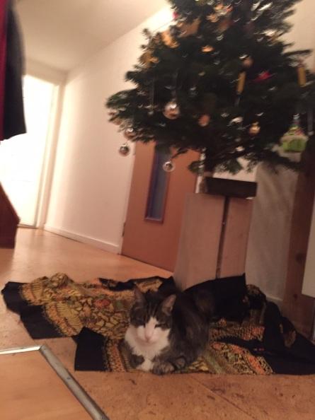 Weihnachten-ohne mich!